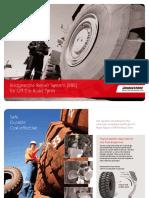 Bridgestone Repair System Reparacion Australia
