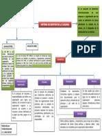 Mapa Conceptual Sistema de Gestion de La Calidad, Freddy Benavente