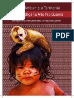 Gestão ambiental e teritorial da terra indígena alto rio Guamá 2017