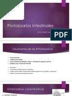 Protozoarios Intestinales - Copia