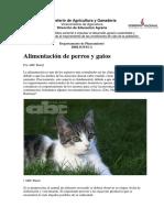 Alimentación de Perros y Gatos