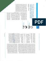 2006 White Case on Cross Border Restructurings