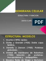 La Membrana Celular