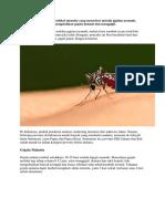 Malaria di eliminasi.docx