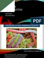Características de Las Procariotas