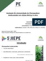 5ª JIEPE 2019 Silva et al.pdf