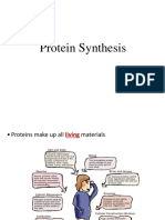 Protein Synthesis, Targeting, Turnover