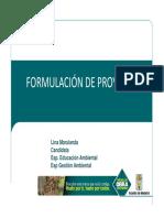 Formulación de Proyectos [Modo de Compatibilidad]