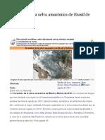 Incendios en Amazonas