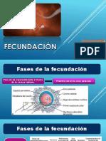 FECUNDACIÓN.pptx