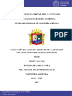 Capacoila_Coila_Javier (1)