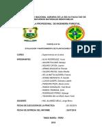 Informe de parcela n°4 plantacion forestal