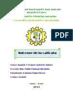 INF. MANEJO Y CONSERVACION DE SUELOS.docx