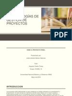 Final Metodologia de Proyectos