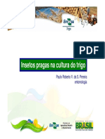Insetos_Pragas_na_cultura_do_trigo (1).pdf