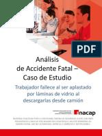 microcaso Grave Fatal transporte 2.pdf