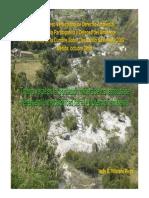 tributo-verde.pdf