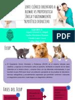 ECOP vs Razonamiento Hipotético Deductivo y Propedeutica Clinica [Autoguardado]