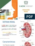 RENAL FISIOLOGIA DR HAACpptx.pptx