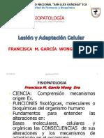 Lesion y adaptacion celular