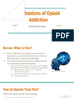 Mechanisms of Opioid Addiction