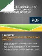 Anomalias Del Desarrollo Del Sistema Nervioso Central (