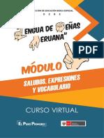 Modulo_3 CURSO LENGUAJE DE SEÑAS