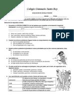 EXAMEN DE SOCIALES TERCERO.docx