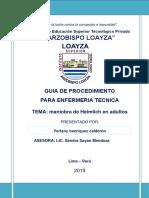 GUIA DE PROCEDIMIENTO 2019 (1) hecho.docx