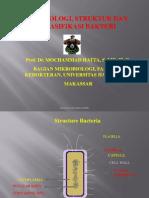 Morfologi, Struktur, Klasifikasi Bakteri Dasar Mikro II)