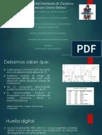 Presentacion IR 270820119.pptx