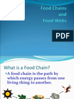 FoodChains.ppt