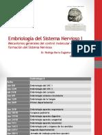 Embriología del Sistema Nervioso I