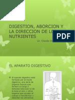Digestion, Aborcion y La Direccion de Los