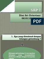2846_13363_SAP 7