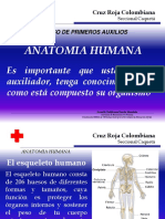 01 Anatoma Humana.ppt