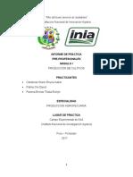 Informe Grupo 02