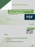 Unidad 2. Bacteriología. Técnicas de Tinción y Observación