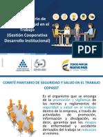3. Comite Paritario de Seguridad y Salud en El Trabajo