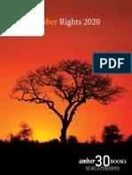 AmberRightsCat 2020 Web