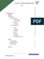 Informe de Inventario Forestal en La Comunidad Campesina de Raquina