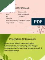 DETERMINASI