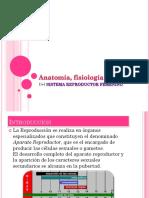 Anatomía, Fisiología e Higiene Del Sistema Reproductor Femenino