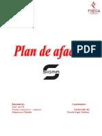 Plan de afacere Gestiune financiara, FCA, II, Grigorescu   Claudia.docx