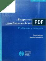 Programacion de La Ensenanza_Feldman Con Notas (1)