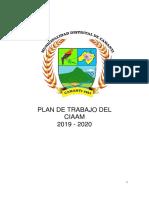 Plan de Trabajo de CIAM