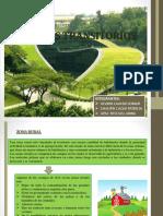 PAISAJES DE TRANSICION