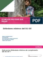 Presentación Estandares Minimos Res. 0312 2019.pptx