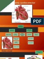 Sistema cardioconector.pptx