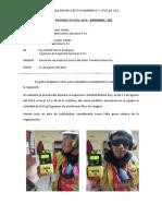 Informe de Trinidad Mateo Roy